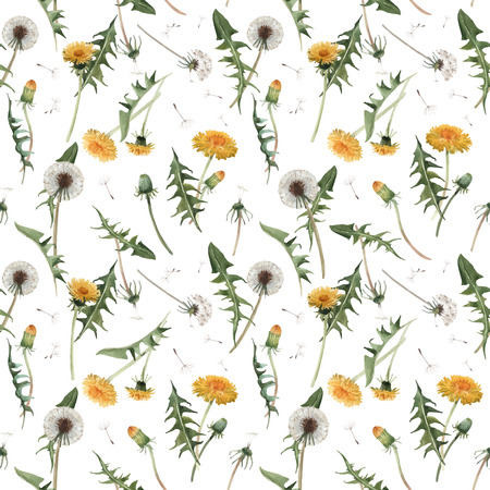 Beautiful vector seamless floral pattern with watercolor dandelion blowball flowers