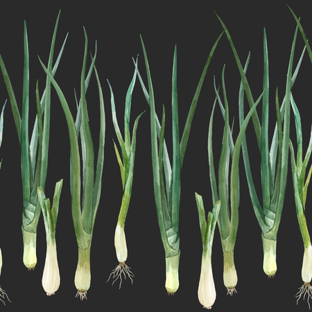 Beautiful vector composition with watercolor green onion