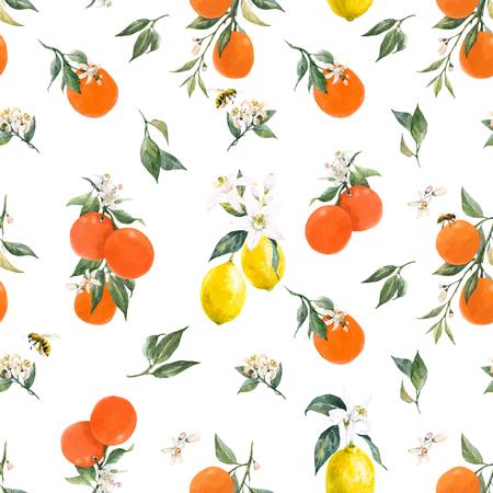 Bello reticolo senza giunte di vettore con acquerello agrumi arancia limone