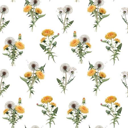 Watercolor dandelion blowball floral seamless pattern Stockfoto