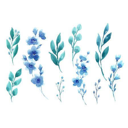 Conjunto floral acuarela