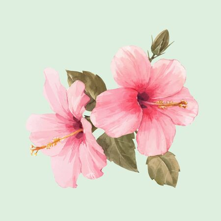 Beautiful vector watercolor illustration with tropical hibiscus flower