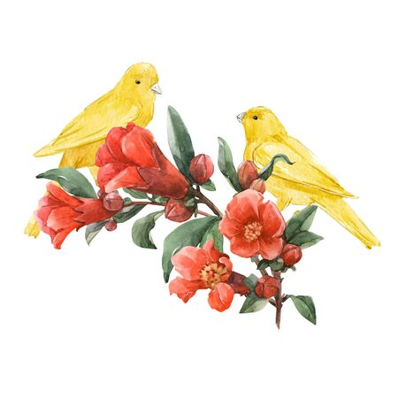 Birds and flowers watercolor composition