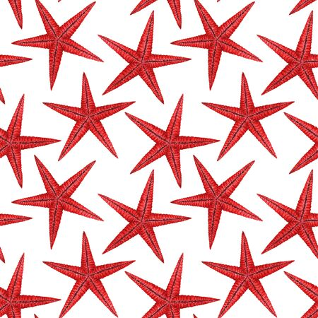 Watercolor sea life starfish pattern 版權商用圖片