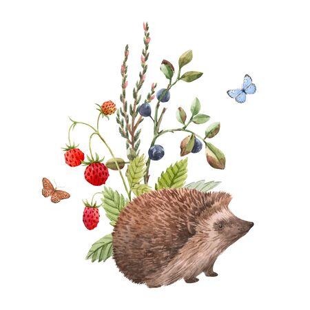 Watercolor hedgehog illustration Foto de archivo - 129212263