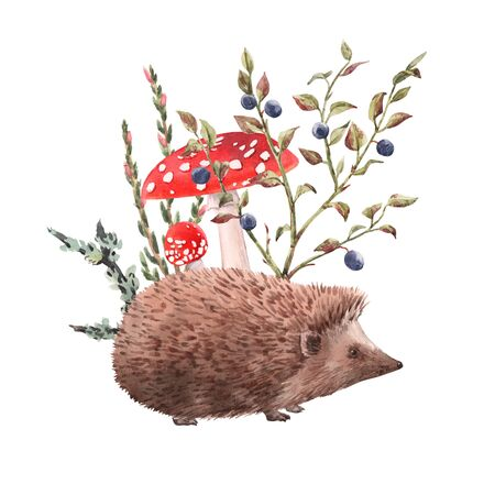 Watercolor hedgehog illustration Foto de archivo - 129212857