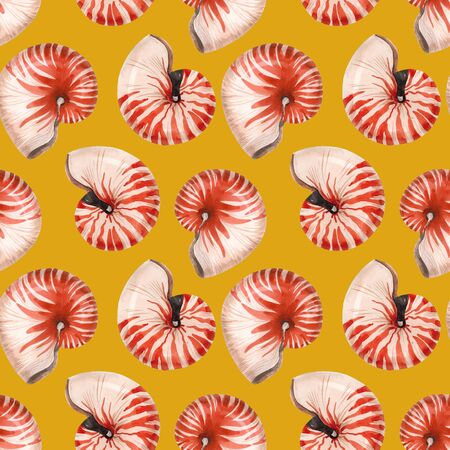 Watercolor sea life nautilus shell pattern