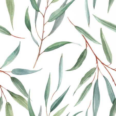 Watercolor Australian floral vector pattern