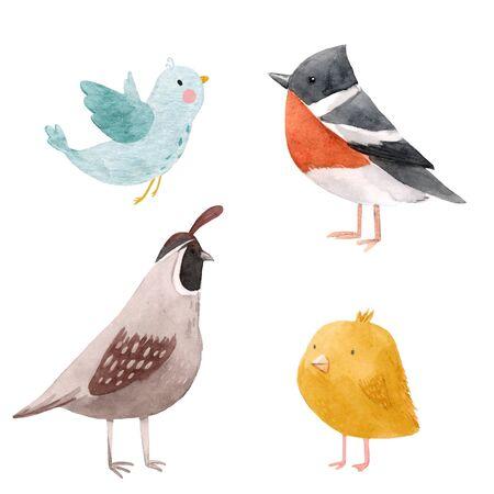 Cute watercolor bird illustration set for children print Stock Photo