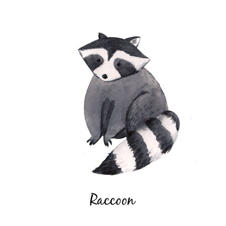 Cute watercolor baby raccoon illustration for children print