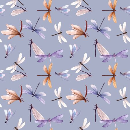 Watercolor vector summer dragonfly insect colourful seamless pattern