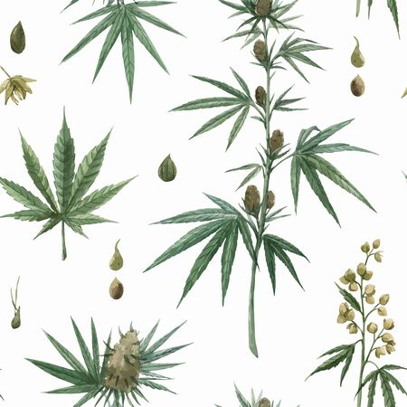 Beautiful vector watercolor medical marijuana seamless pattern. Natural therapeutic drug. Ilustração