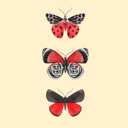 Beautiful vector watercolor three red butterfly set. Colorful summer insects. Hand drawn clip art. Beauty of nature. Transparent background. Isolated objects