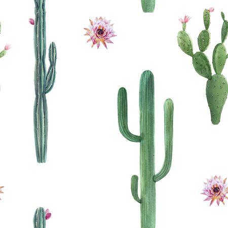 Nahtloses Muster des schönen Aquarellkaktus. Handgezeichnete Illustrationen. Weißer Hintergrund. Standard-Bild