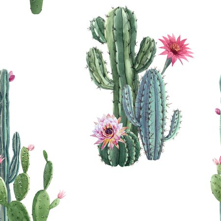 Beautiful watercolor cactus seamless pattern. Hand drawn stock illustrations. White background. Stock fotó