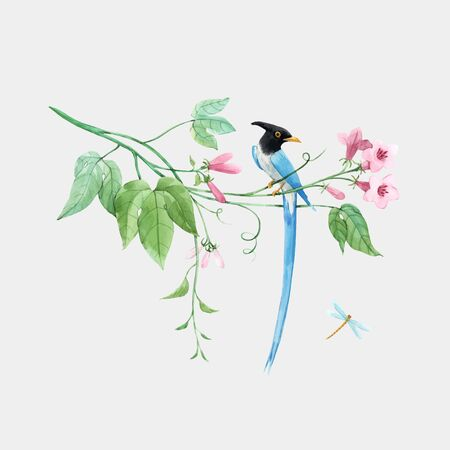 Watercolor vector birds of paradise on branch with tropical gentle pink flowers. White isolated background. Stock hand drawn illustration