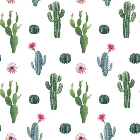 Beautiful vector watercolor cactus seamless pattern. Hand drawn stock illustrations. White background. Desert plants.