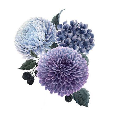 Bella composizione bouquet con fiori di ortensia e dalia blu acquerello e mora. Archivio Fotografico