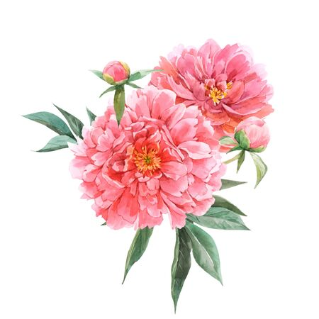 Beautiful vector floral bouquet composition with watercolor pink peony flowers. Stock illustration