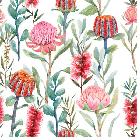 Beautiful vector seamless floral pattern with watercolor summer protea and australian banksia flowers. Stock illustration.