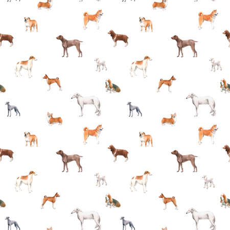 Beautiful seamless pattern with cute watercolor hand drawn dog breeds Cocker spaniel Greyhound Hound Basenji and Russian Greyhound Whippet . Stock illustration.