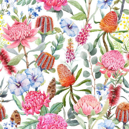 Beautiful seamless pattern with hand drawn watercolor protea banksia and other australian flowers. Stock illustration.