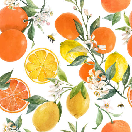 Beautiful vector seamless pattern with watercolor hand drawn citrus orange lemon grapefruit fruits. Stock illustration.