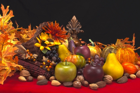 cornucopia with fleur-de-les and assorted fruits gourds and nuts on red and black background Stock Photo - 10286731