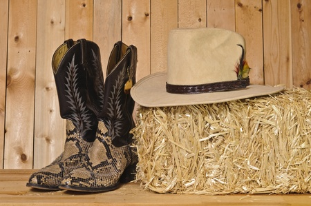 snake skin cowboy boots and hat on wood background