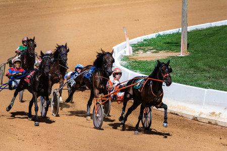 caballos corriendo: Caballos de carreras Harness redondeo a su vez en la feria del condado Editorial