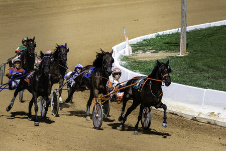 Harness racing horses rounding turn at county fair