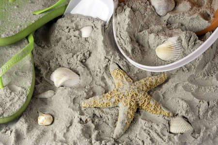 flops: beach scene with flip flops sand shells starfish and shovel