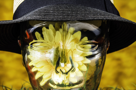 clear glass human head with sunflower inside