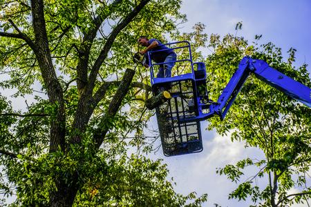 Man op de lucht lift boom met kettingzaag