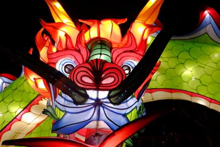 Neon Dragon Фото со стока