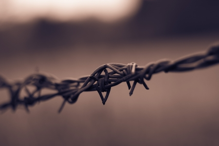 barbed wire Stock Photo - 18377422