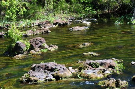 river flowing around large rocks with kale in the water