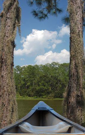 canoe stuck between two trees