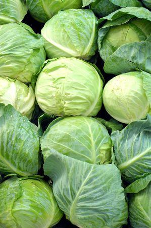 organic cabbage for sale at farmers market 版權商用圖片