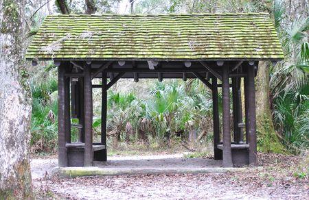 sheltering: forest shelter