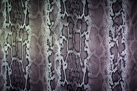 texture of print fabric stripes snake for background Imagens