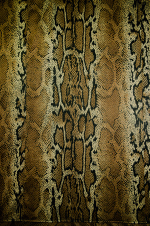 snake skin pattern: texture of fabric stripes snake leather for background