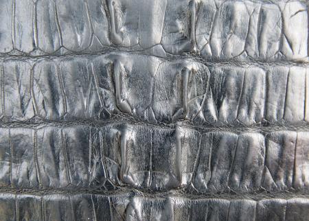 black leather texture: Black crocodile leather texture closeup background.