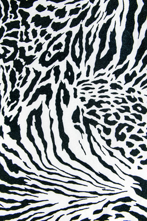 tiger white: texture of print fabric striped zebra and leopard for background