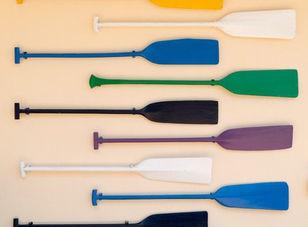 paddles: paddles colorful on the wall