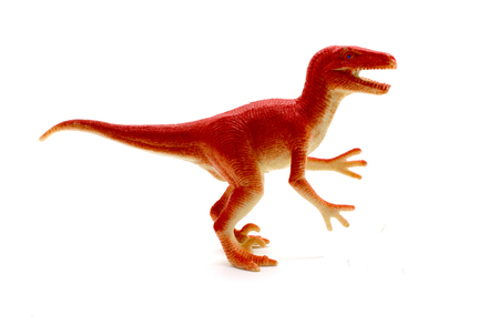 Raptor dinosaurs toy on white background