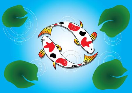 Ying Yang Koi Fish Swimming on Lotus Pond Illustration