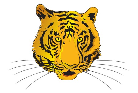 Tiger Illustration Stock Vector - 3087555