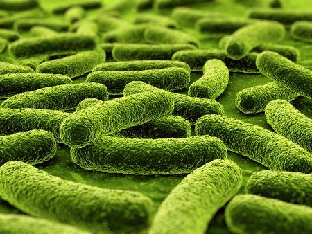 bacterias: 3D de una bacteria