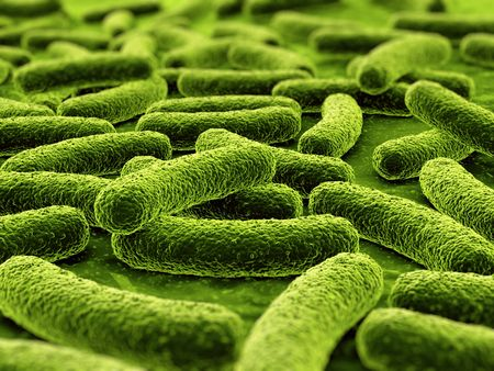 3d rendering of a bacteria Stock Photo - 3397889